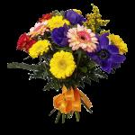 Bouquet colorato fiori di stagione