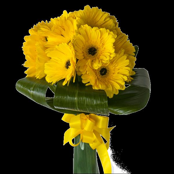 Scettro gerbere gialle con foglie di aspidistra
