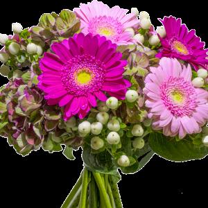 Bouquet ortensia gerbera iperico