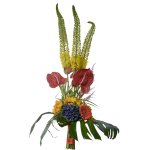 Mazzo-eremorus-anthurium-girasoli
